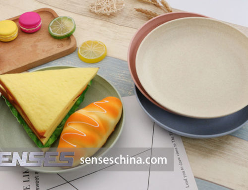 Healthy plate supplier